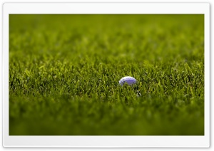 Golf Ball Macro HD Wide Wallpaper for Widescreen
