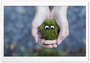 Googly Eyes HD Wide Wallpaper for Widescreen