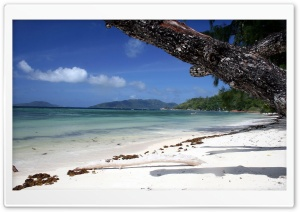 Gorgeous Beach HD Wide Wallpaper for Widescreen