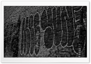 Graffiti HD Wide Wallpaper for Widescreen