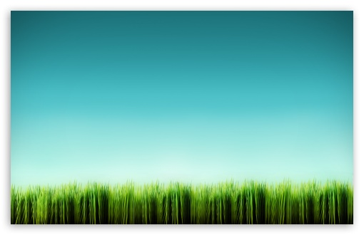 Grass Blades HD wallpaper for Wide 16:10 5:3 Widescreen WHXGA WQXGA WUXGA WXGA WGA ; HD 16:9 High Definition WQHD QWXGA 1080p 900p 720p QHD nHD ; Standard 4:3 5:4 3:2 Fullscreen UXGA XGA SVGA QSXGA SXGA DVGA HVGA HQVGA devices ( Apple PowerBook G4 iPhone 4 3G 3GS iPod Touch ) ; Tablet 1:1 ; iPad 1/2/Mini ; Mobile 4:3 5:3 3:2 16:9 5:4 - UXGA XGA SVGA WGA DVGA HVGA HQVGA devices ( Apple PowerBook G4 iPhone 4 3G 3GS iPod Touch ) WQHD QWXGA 1080p 900p 720p QHD nHD QSXGA SXGA ; Dual 16:10 5:3 16:9 4:3 5:4 WHXGA WQXGA WUXGA WXGA WGA WQHD QWXGA 1080p 900p 720p QHD nHD UXGA XGA SVGA QSXGA SXGA ;