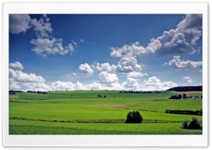 Grass Field HD Wide Wallpaper for Widescreen