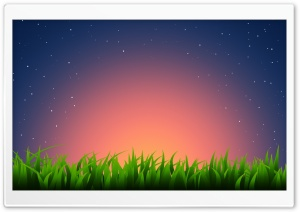 Grass Illustration Ultra HD Wallpaper for 4K UHD Widescreen desktop, tablet & smartphone
