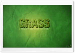 Grass is Always Greener on the other side Ultra HD Wallpaper for 4K UHD Widescreen desktop, tablet & smartphone