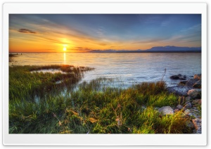 Grass Lake HDR HD Wide Wallpaper for Widescreen