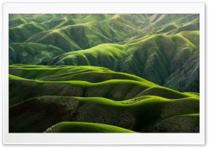 Grassland Landscape Ultra HD Wallpaper for 4K UHD Widescreen desktop, tablet & smartphone