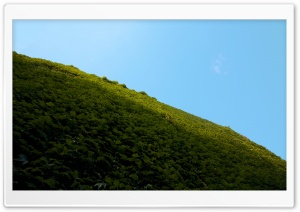 Grassy Sky HD Wide Wallpaper for Widescreen