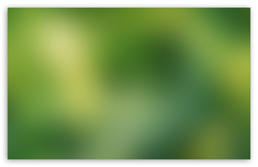 Green Blurry Background HD wallpaper for Standard 4:3 5:4 Fullscreen UXGA XGA SVGA QSXGA SXGA ; Wide 16:10 5:3 Widescreen WHXGA WQXGA WUXGA WXGA WGA ; HD 16:9 High Definition WQHD QWXGA 1080p 900p 720p QHD nHD ; Other 3:2 DVGA HVGA HQVGA devices ( Apple PowerBook G4 iPhone 4 3G 3GS iPod Touch ) ; Mobile VGA WVGA iPhone iPad PSP Phone - VGA QVGA Smartphone ( PocketPC GPS iPod Zune BlackBerry HTC Samsung LG Nokia Eten Asus ) WVGA WQVGA Smartphone ( HTC Samsung Sony Ericsson LG Vertu MIO ) HVGA Smartphone ( Apple iPhone iPod BlackBerry HTC Samsung Nokia ) Sony PSP Zune HD Zen ;
