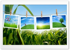 Green Collage HD Wide Wallpaper for Widescreen