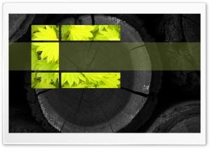 Green Desktop HD Wide Wallpaper for Widescreen