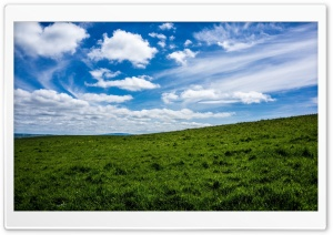 Green Field HD Wide Wallpaper for 4K UHD Widescreen desktop & smartphone