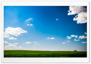 Green Field Nature Blue Sky HD Wide Wallpaper for 4K UHD Widescreen desktop & smartphone