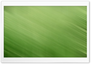Green HD HD Wide Wallpaper for Widescreen
