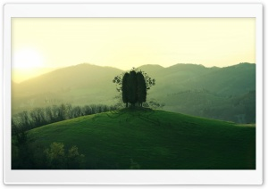 Green Hill HD Wide Wallpaper for Widescreen