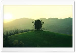 Green Hill HD Wide Wallpaper for Widescreen
