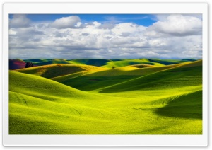 Green Hills HD Wide Wallpaper for Widescreen