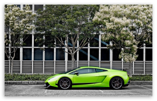 Green Lamborghini Gallardo Superleggera ❤ 4K UHD Wallpaper for Wide 16:10 5:3 Widescreen WHXGA WQXGA WUXGA WXGA WGA ; 4K UHD 16:9 Ultra High Definition 2160p 1440p 1080p 900p 720p ; Standard 4:3 5:4 3:2 Fullscreen UXGA XGA SVGA QSXGA SXGA DVGA HVGA HQVGA ( Apple PowerBook G4 iPhone 4 3G 3GS iPod Touch ) ; Tablet 1:1 ; iPad 1/2/Mini ; Mobile 4:3 5:3 3:2 16:9 5:4 - UXGA XGA SVGA WGA DVGA HVGA HQVGA ( Apple PowerBook G4 iPhone 4 3G 3GS iPod Touch ) 2160p 1440p 1080p 900p 720p QSXGA SXGA ;