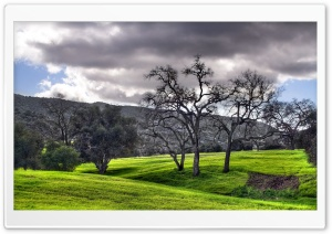 Green Landscape HDR HD Wide Wallpaper for Widescreen