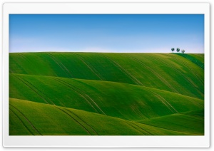 Green Rolling Hills Ultra HD Wallpaper for 4K UHD Widescreen desktop, tablet & smartphone