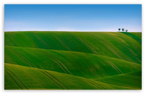 green rolling hills wallpapers