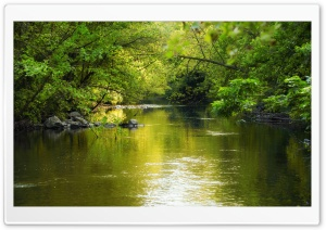 Green Stream HD Wide Wallpaper for Widescreen