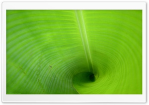 Green Tube HD Wide Wallpaper for Widescreen