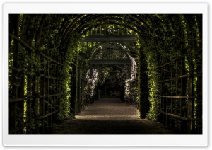 Green Tunnel Ultra HD Wallpaper for 4K UHD Widescreen desktop, tablet & smartphone