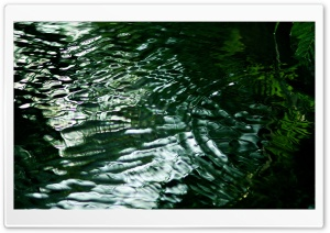 Green Water HD Wide Wallpaper for Widescreen