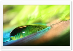 Green Water Drop Bokeh HD Wide Wallpaper for Widescreen