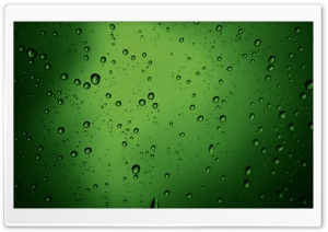 Green Water Drops HD Wide Wallpaper for Widescreen