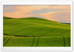 Green Wavy Hills HD Wide Wallpaper for Widescreen