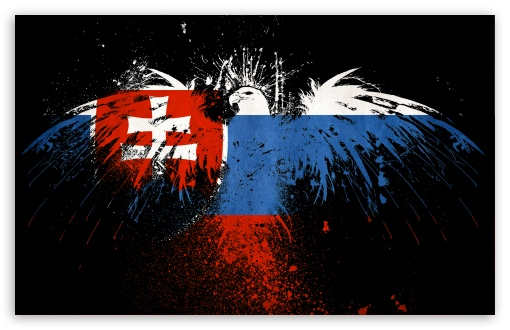 Grunge Flag Of Slovakia HD wallpaper for Wide 16:10 5:3 Widescreen WHXGA WQXGA WUXGA WXGA WGA ; HD 16:9 High Definition WQHD QWXGA 1080p 900p 720p QHD nHD ; Standard 3:2 Fullscreen DVGA HVGA HQVGA devices ( Apple PowerBook G4 iPhone 4 3G 3GS iPod Touch ) ; Mobile 5:3 3:2 16:9 - WGA DVGA HVGA HQVGA devices ( Apple PowerBook G4 iPhone 4 3G 3GS iPod Touch ) WQHD QWXGA 1080p 900p 720p QHD nHD ;