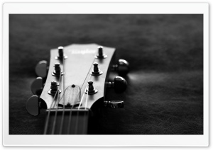 Guitar Head Monochrome HD Wide Wallpaper for Widescreen