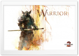 GW2 Warrior HD Wide Wallpaper for 4K UHD Widescreen desktop & smartphone