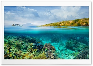 Half Underwater Half Above Water Photography HD Wide Wallpaper for Widescreen