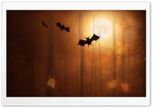 Halloween Bats HD Wide Wallpaper for 4K UHD Widescreen desktop & smartphone