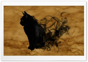 Halloween Black Cat HD Wide Wallpaper for Widescreen