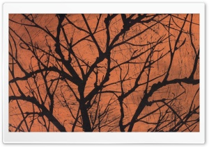 Halloween Creepy Tree HD Wide Wallpaper for 4K UHD Widescreen desktop & smartphone