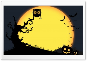 Halloween Full Moon Night, Owl, Bats, Jack-o-lantern HD Wide Wallpaper for 4K UHD Widescreen desktop & smartphone