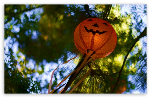 Halloween Lanterns HD wallpaper for Wide 16:10 5:3 Widescreen WHXGA WQXGA WUXGA WXGA WGA ; HD 16:9 High Definition WQHD QWXGA 1080p 900p 720p QHD nHD ; UHD 16:9 WQHD QWXGA 1080p 900p 720p QHD nHD ; Standard 4:3 5:4 3:2 Fullscreen UXGA XGA SVGA QSXGA SXGA DVGA HVGA HQVGA devices ( Apple PowerBook G4 iPhone 4 3G 3GS iPod Touch ) ; Tablet 1:1 ; iPad 1/2/Mini ; Mobile 4:3 5:3 3:2 16:9 5:4 - UXGA XGA SVGA WGA DVGA HVGA HQVGA devices ( Apple PowerBook G4 iPhone 4 3G 3GS iPod Touch ) WQHD QWXGA 1080p 900p 720p QHD nHD QSXGA SXGA ;