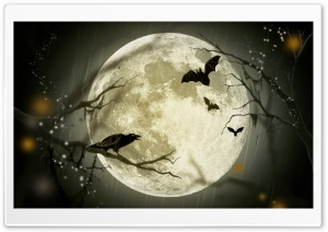 Halloween Moon HD Wide Wallpaper for 4K UHD Widescreen desktop & smartphone