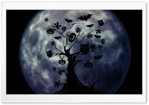Halloween Owls and Bats HD Wide Wallpaper for Widescreen