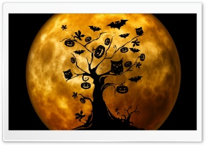 Halloween Owls and Bats Orange HD Wide Wallpaper for Widescreen