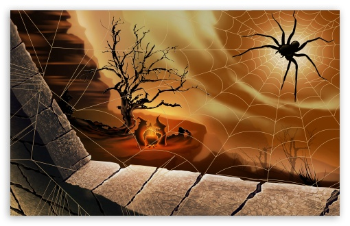 Halloween Spirit Spider Web Hallowmas HD wallpaper for Wide 16:10 5:3 Widescreen WHXGA WQXGA WUXGA WXGA WGA ; HD 16:9 High Definition WQHD QWXGA 1080p 900p 720p QHD nHD ; Standard 3:2 Fullscreen DVGA HVGA HQVGA devices ( Apple PowerBook G4 iPhone 4 3G 3GS iPod Touch ) ; Mobile 5:3 3:2 16:9 - WGA DVGA HVGA HQVGA devices ( Apple PowerBook G4 iPhone 4 3G 3GS iPod Touch ) WQHD QWXGA 1080p 900p 720p QHD nHD ;