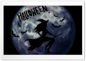 Halloween Witch on Broom HD Wide Wallpaper for Widescreen