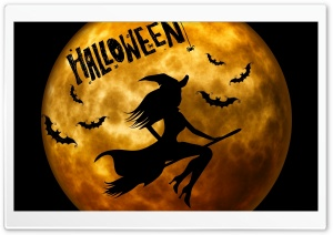 Halloween Witch on Broom Orange HD Wide Wallpaper for Widescreen
