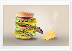 Hamburger HD Wide Wallpaper for Widescreen