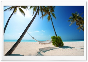 Hammock On Tropical Beach HD Wide Wallpaper for 4K UHD Widescreen desktop & smartphone