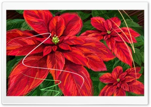 Hand Drawn Poinsettia HD Wide Wallpaper for Widescreen