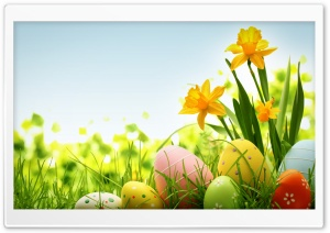 Happy Easter 2014 HD Wide Wallpaper for Widescreen